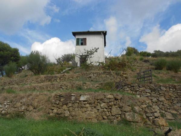 Rustico / Casale in Vendita a Soldano