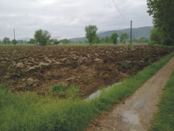 Vendita Terreno agricolo Sansepolcro Rif.1472545