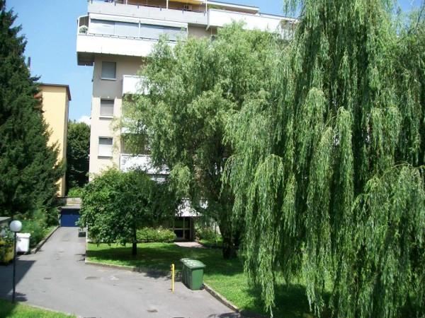 Appartamento in affitto a Cremona, 3 locali, prezzo € 550 | CambioCasa.it