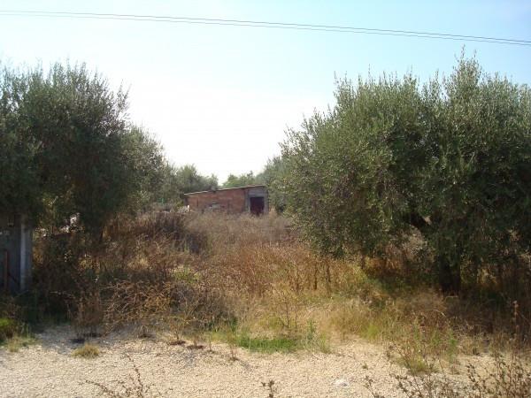 Bilocale Cisterna di Latina Via Eschito 7