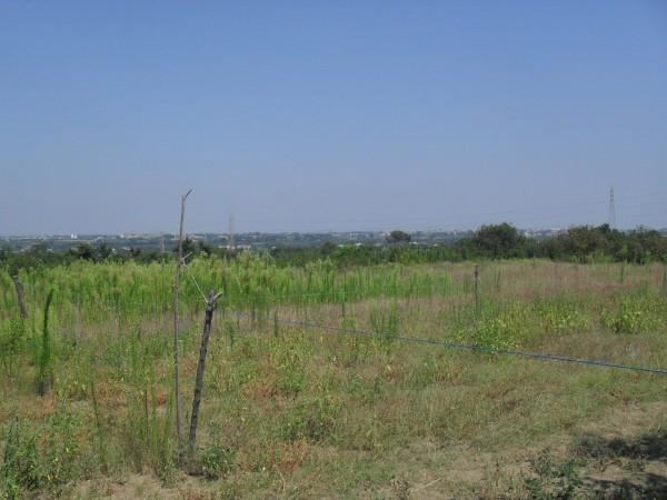 Terreno Agricolo in vendita a Qualiano, 9999 locali, prezzo € 23.000 | Cambio Casa.it