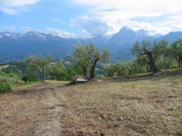 Terreno Edificabile Residenziale in vendita a Colledara, 9999 locali, prezzo € 14.000 | Cambio Casa.it