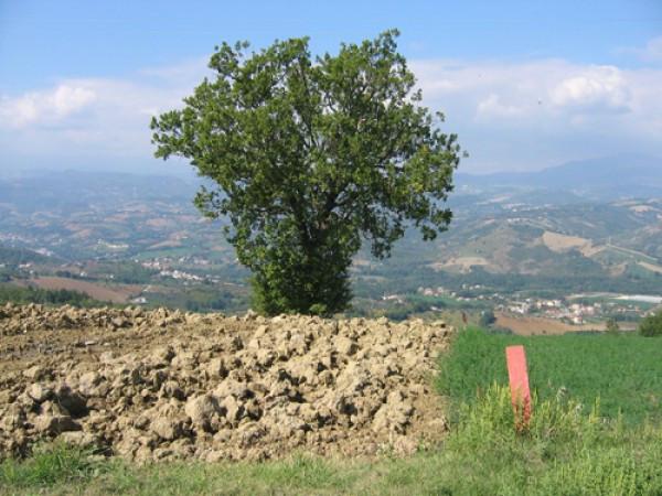 Terreno Agricolo in vendita a Colledara, 9999 locali, prezzo € 34.000 | Cambio Casa.it