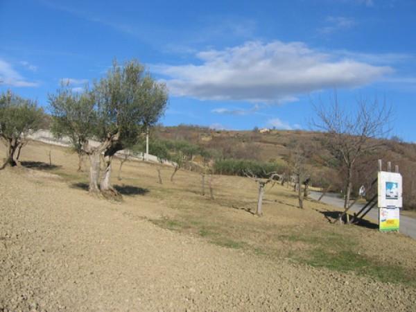 Terreno Edificabile Residenziale in vendita a Colledara, 9999 locali, prezzo € 39.500 | CambioCasa.it