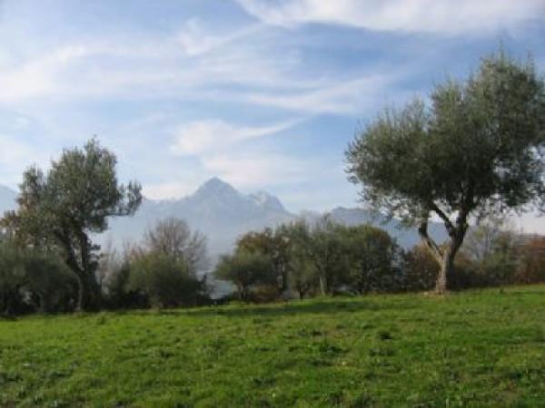 Terreno Agricolo in vendita a Colledara, 9999 locali, prezzo € 29.500 | Cambio Casa.it