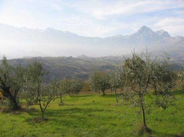 Terreno Agricolo in vendita a Colledara, 9999 locali, prezzo € 15.500 | Cambio Casa.it