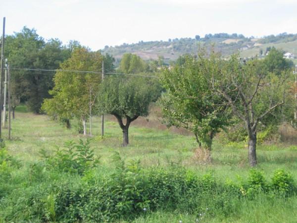 Terreno Edificabile Residenziale in vendita a Colledara, 9999 locali, prezzo € 18.000 | CambioCasa.it