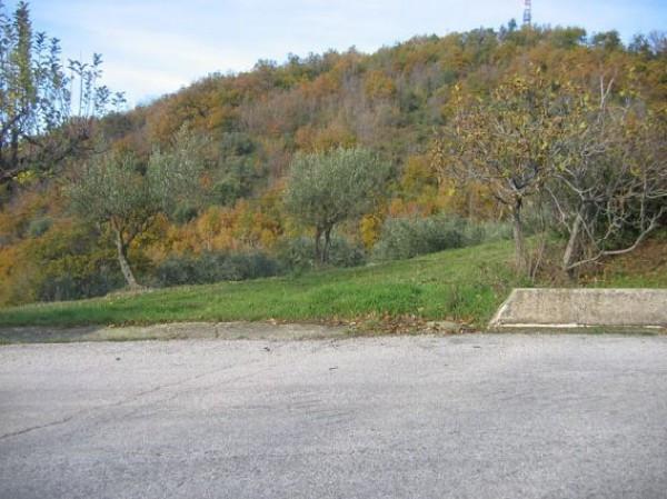 Terreno Agricolo in vendita a Colledara, 9999 locali, prezzo € 9.000 | CambioCasa.it