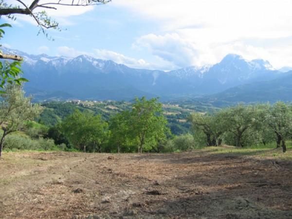 Terreno Edificabile Residenziale in vendita a Colledara, 9999 locali, prezzo € 17.500 | CambioCasa.it