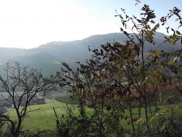Bilocale Castell Arquato Via Pasubio 9