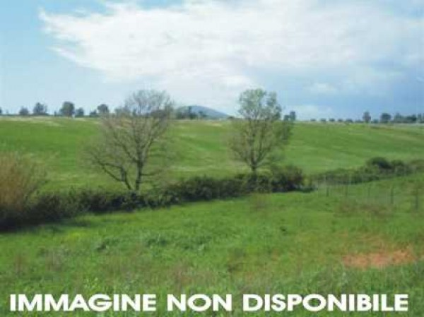 Vendita Terreno agricolo Sansepolcro Rif.1472647
