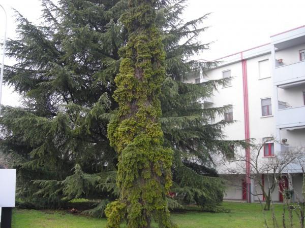 Appartamento in vendita a Fara Gera d'Adda, 3 locali, prezzo € 125.000 | Cambio Casa.it