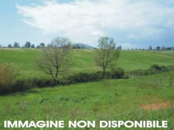 Vendita Terreno agricolo Sansepolcro Rif.1472772