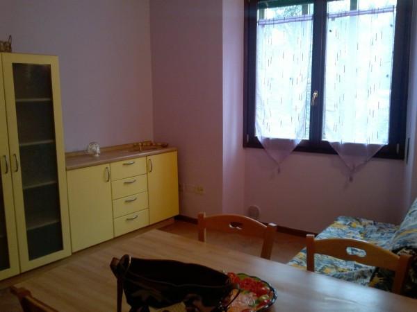 Appartamento Bilocale a Lonato del Garda in affitto - 55mq