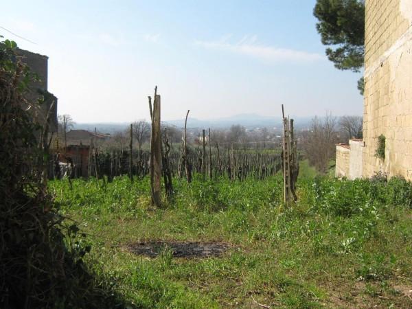 Terreno Edificabile Residenziale in vendita a Vairano Patenora, 9999 locali, prezzo € 70.000 | Cambio Casa.it