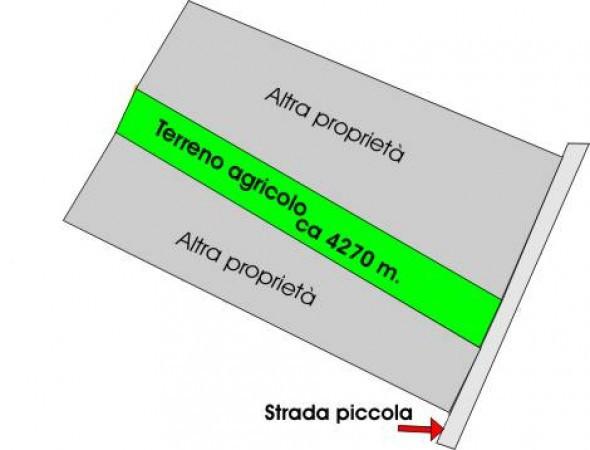 Vendita Terreno agricolo Sansepolcro Rif.1472666