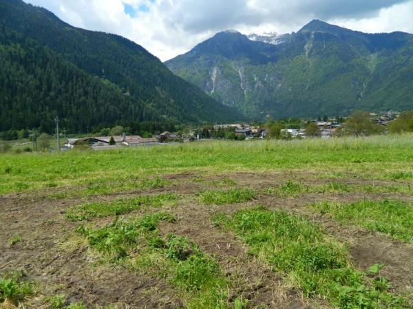 Terreno residenziale in Vendita a Pinzolo Periferia: 677 mq