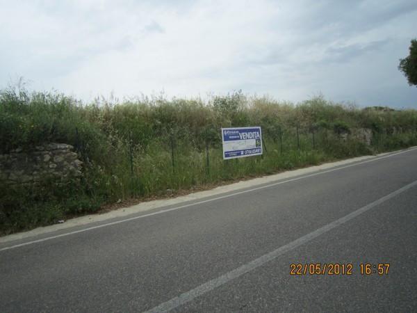 Terreno Agricolo in vendita a Tarquinia, 9999 locali, prezzo € 120.000 | CambioCasa.it
