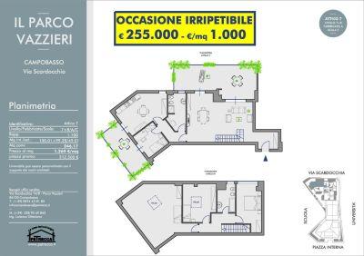 foto Appartamento Vendita Campobasso