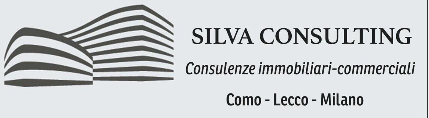 Silva consulting