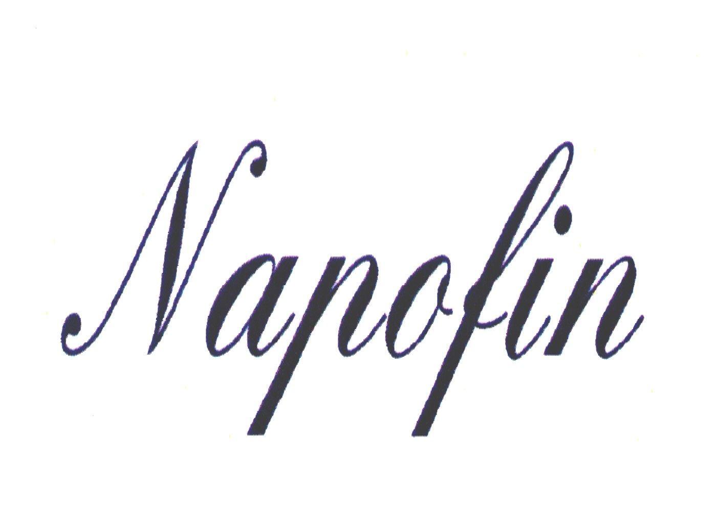Napofin Immobiliare s.a.s