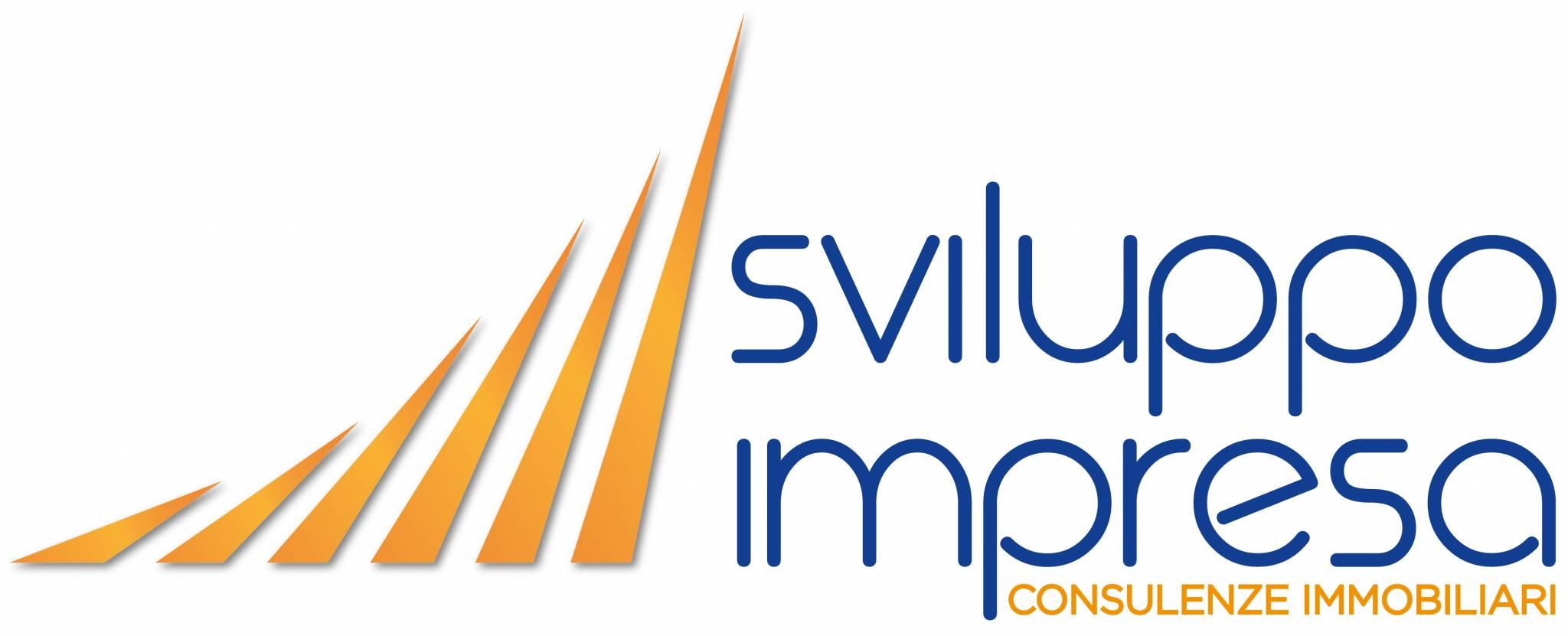 >Sviluppo Impresa