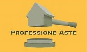 Professione Aste