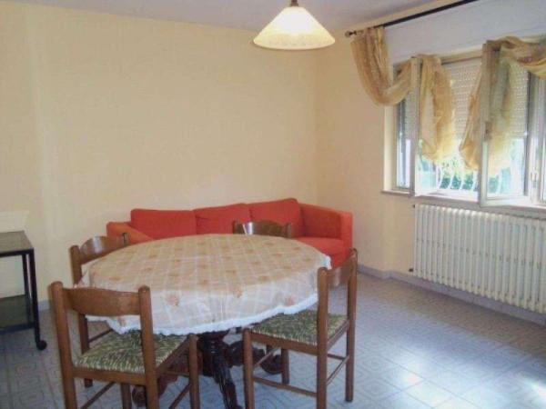 Affitto  bilocale Lucca Via Petri 1 488181
