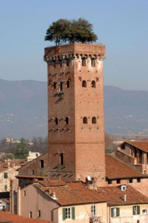 Vendita  bilocale Lucca Via Delle Ville 1 1 862432