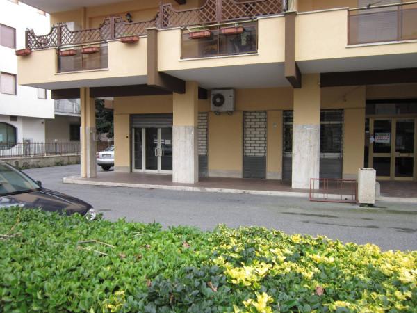 Negozio / Locale in affitto a Santa Marinella, 2 locali, prezzo € 1.550 | CambioCasa.it