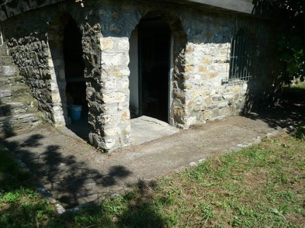 case Chiusanico