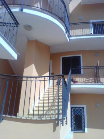 Appartamento in affitto Rif. 4532321